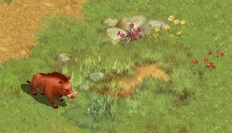 ネオクラシックオンラインMMORPG『ロードス島戦記オンライン』 イノシシをモチーフにしたモンスターが大量発生