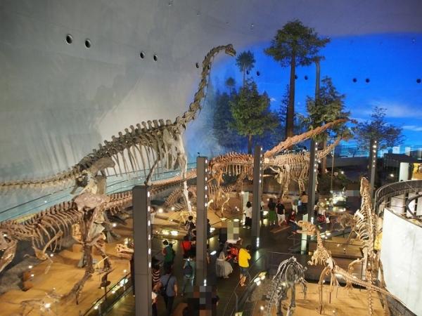 恐竜(17)