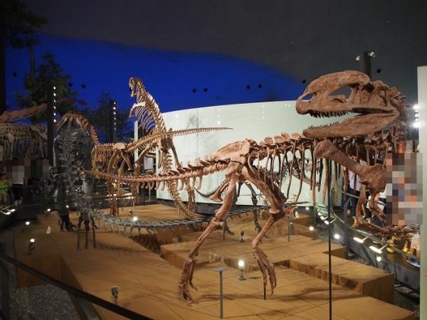 恐竜(19)