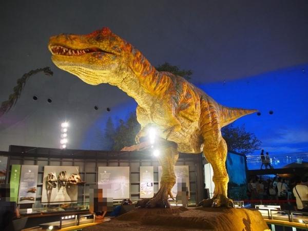 恐竜(20)