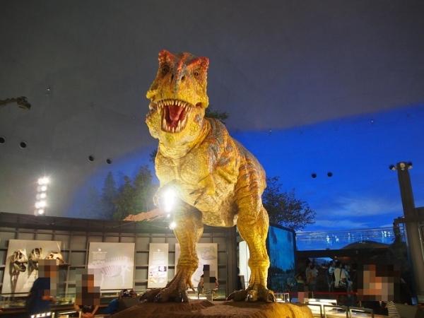 恐竜(21)