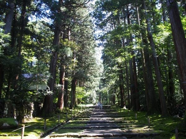 白山神社(6)