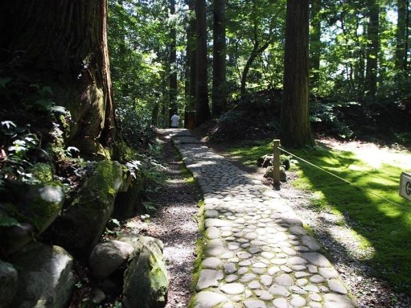 白山神社(27)