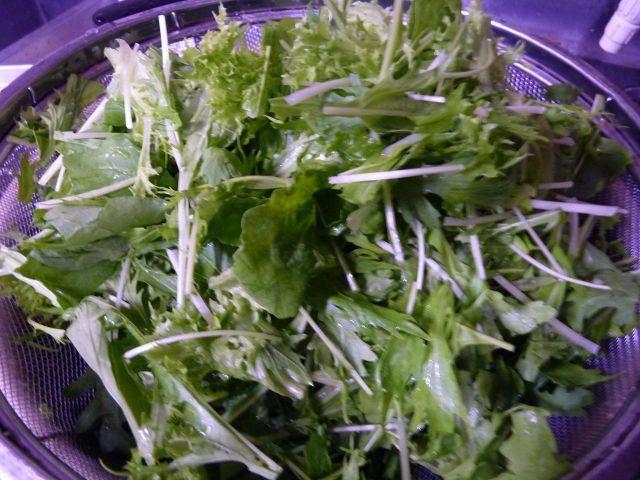 葉っぱ 地元野菜
