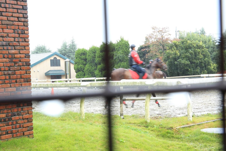 2017 10 22 ブログ 雨中の中の馬術練習.jpg