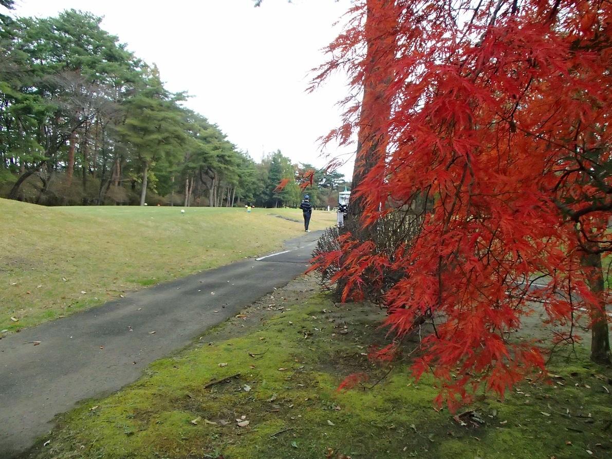 2017 11 01 ブログ ゴルフ場も秋景色.jpg