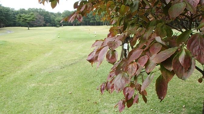 2017 11 01 ブログ ゴルフ場の秋.jpg