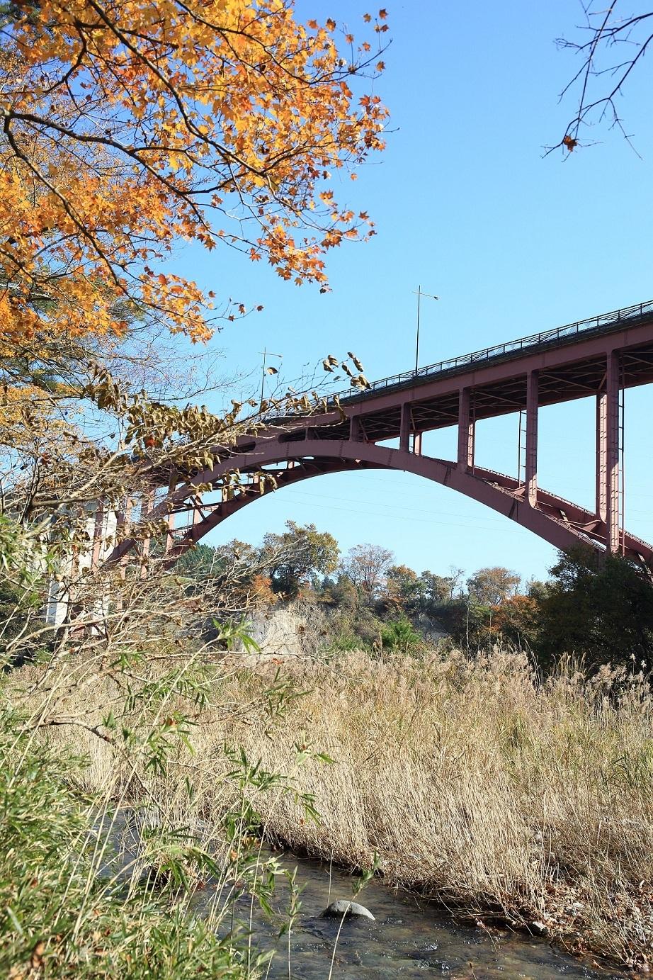 2017 11 06 ブログ  紅葉と川と橋.jpg