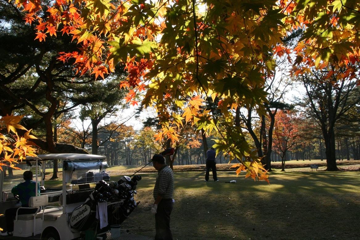 11 07 ゴルフ Eさんのショット.jpg