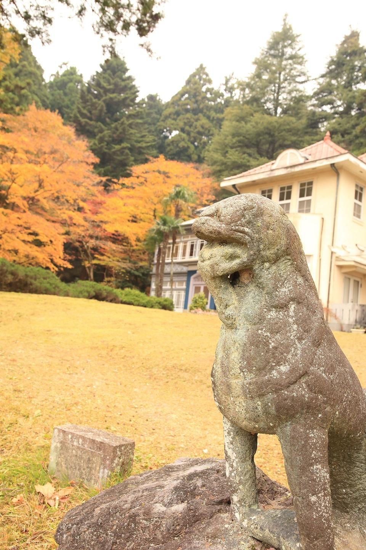 2017 1118 ブログ 狛犬.jpg