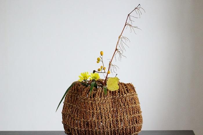イタドリ ツルウメモドキ 菊