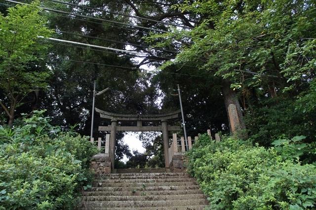 20170915TakahamaS028s.jpg