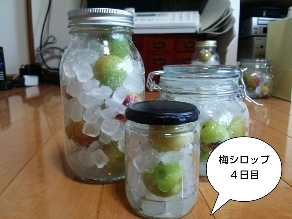 梅シロップ4日目