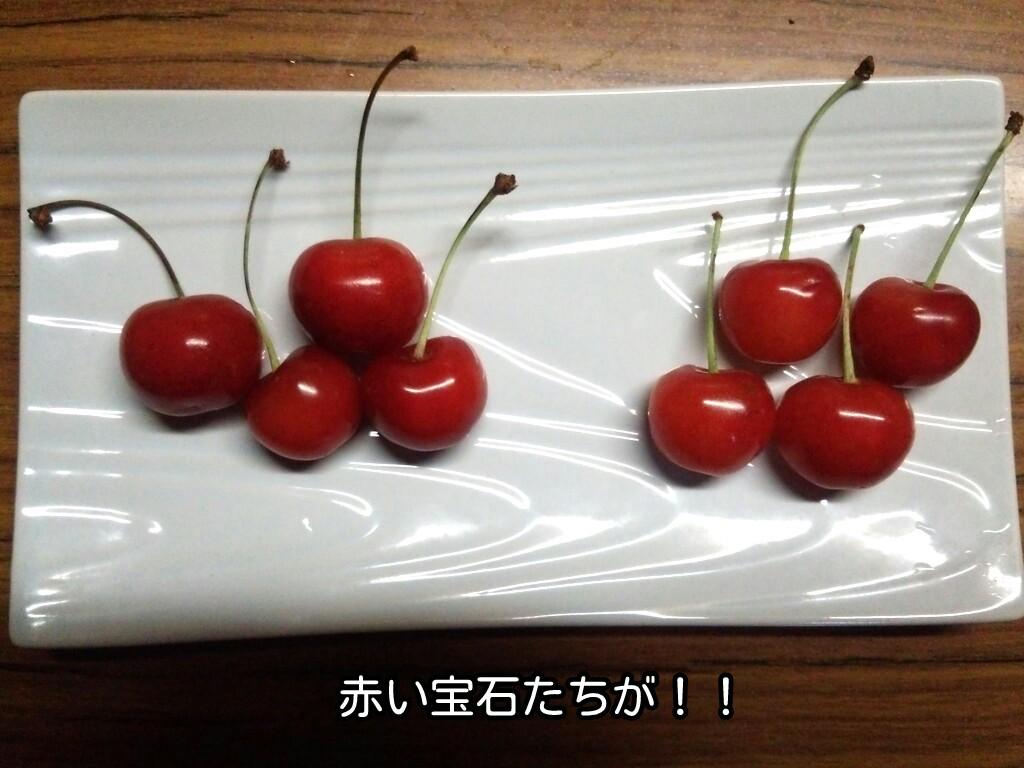 赤い宝石たちが!!