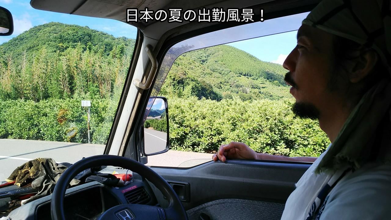 日本の夏の出勤風景