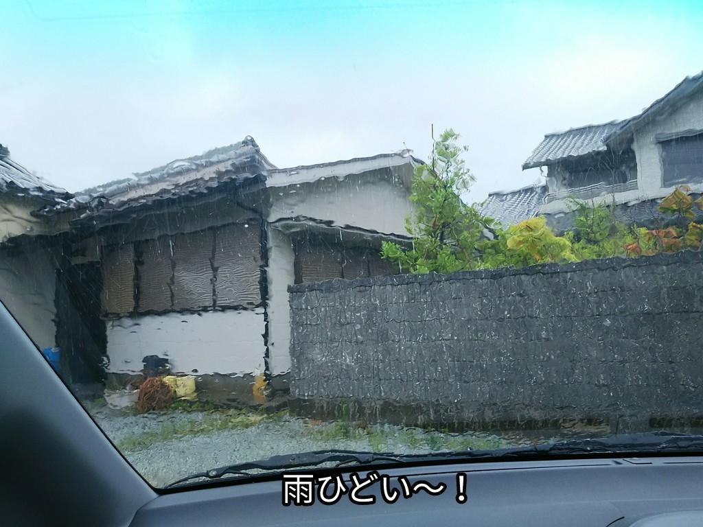雨ひどい~!