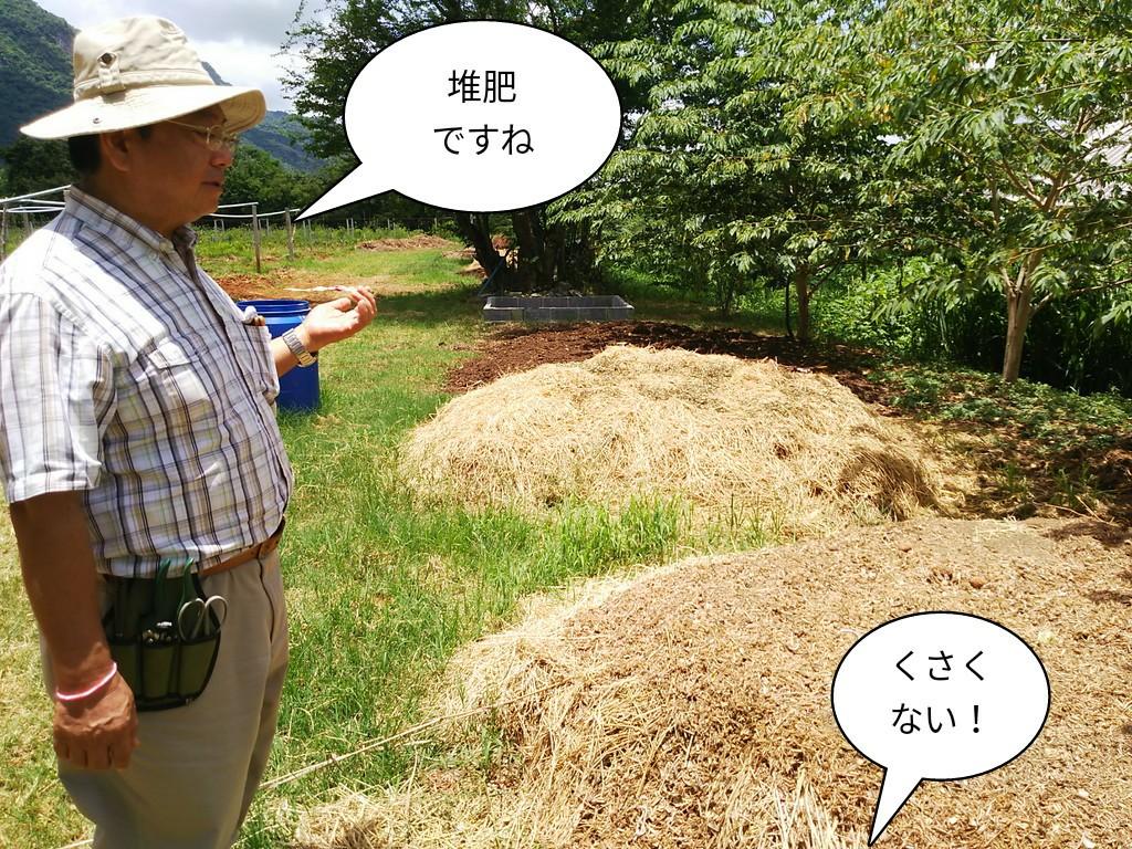 堆肥ですよ