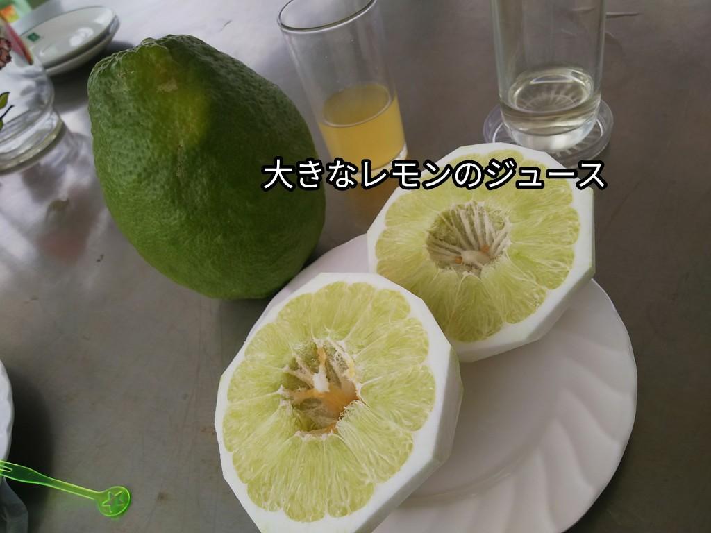 大きなレモンのジュース
