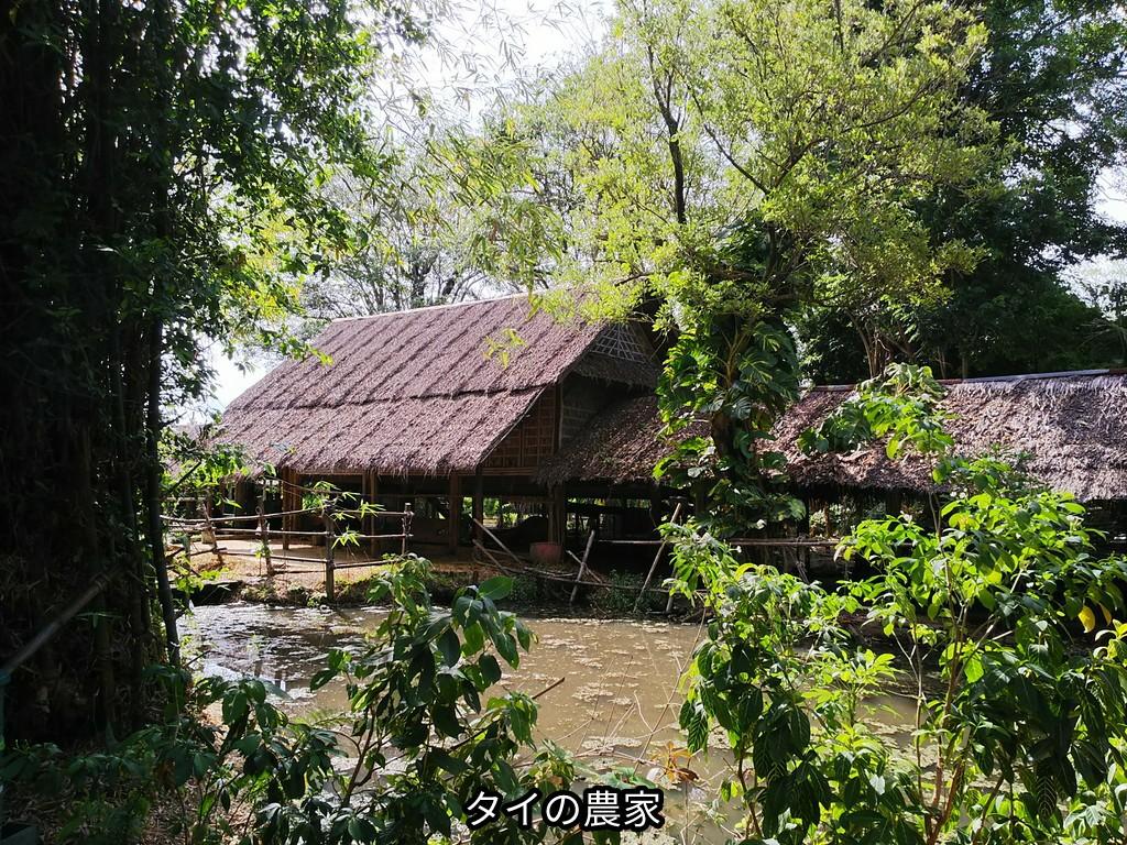 タイの農家