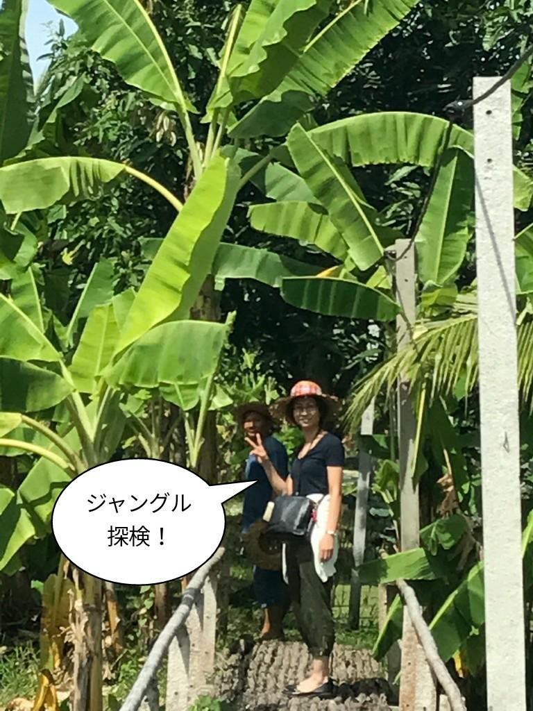 ジャングル探検!