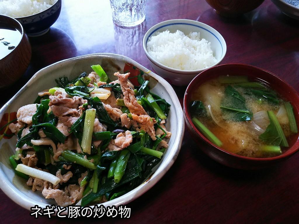 ネギと豚の炒め物