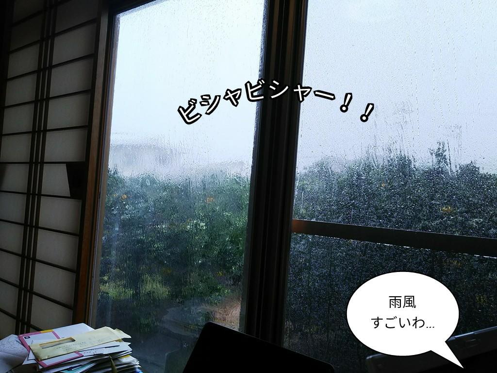 雨風すごいわ