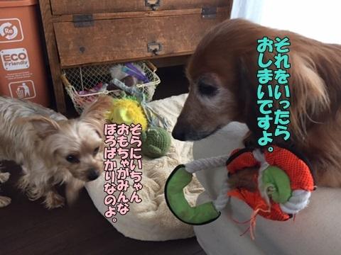 image1100401.jpg