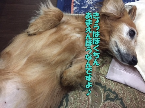 image111220203.jpg