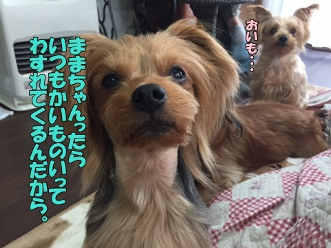 image2102590101.jpg