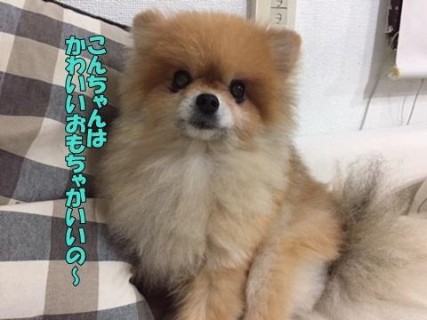 image4100401.jpg