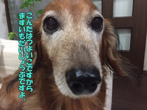 image610280101.jpg