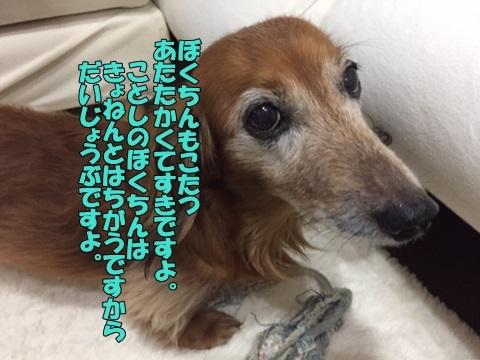 image7100501.jpg