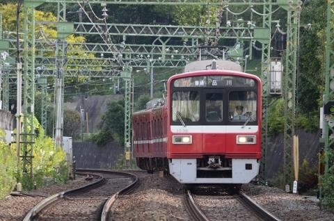DSC_7350.jpg