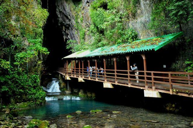 【鍾乳洞】山口県にある「秋芳洞」で長さ300mの大規模空間を発見