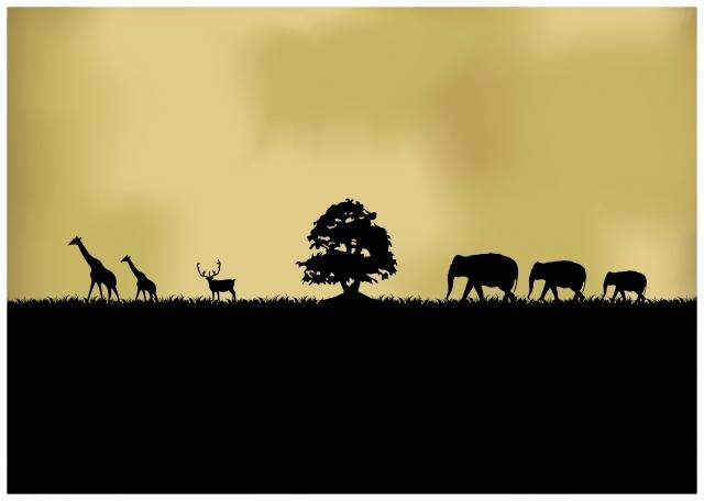 【近未来】野生動物たちがいなくなる日…増え続ける人類による食糧、水の高まりによる「絶滅の危機」に専門も警鐘