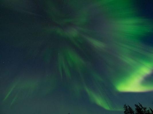 aurora7867886.jpg
