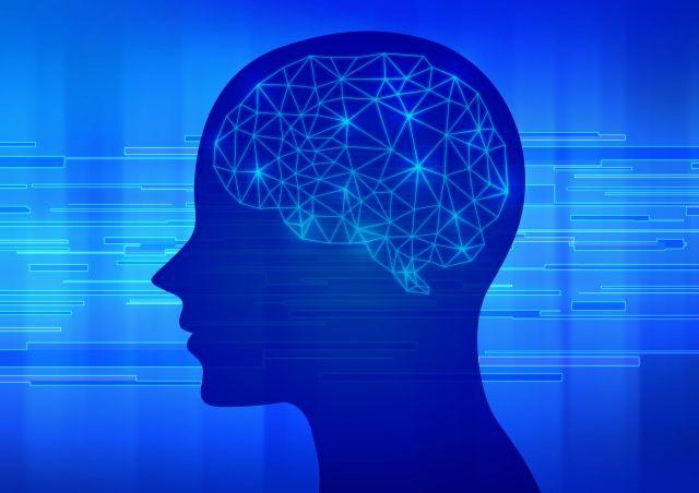 人間の能力のピークは年齢により変わる…18歳→処理能力と記憶力 44歳→集中力 50歳→計算能力 67歳で語彙力が開花する