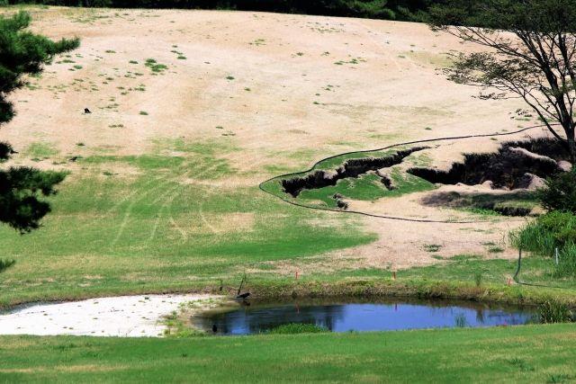 【九州】文化庁「熊本地震を引き起こした布田川断層帯を天然記念物にしよう」