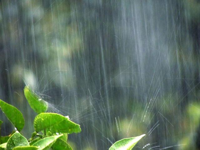 【天気】空梅雨から一転、災害レベルの大雨に警戒…西~東日本