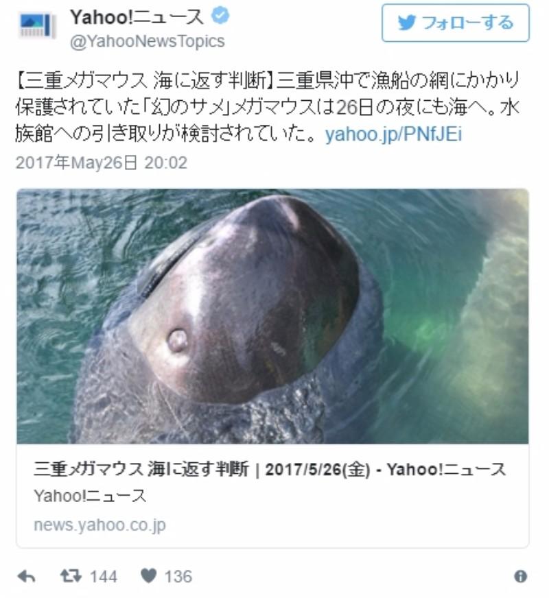【南海トラフ】深海ザメ「メガマウス」またも見つかる!今度は三重県沖の熊野灘で網にかかる…巨大地震の前触れか?