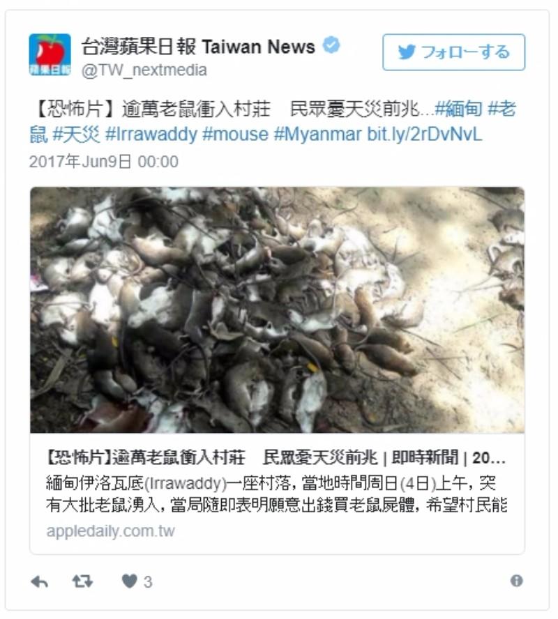 【前触れ】ミャンマーで突如、数千匹以上の「ネズミ」が出現し住民らの間で大災害の前兆かと噂に