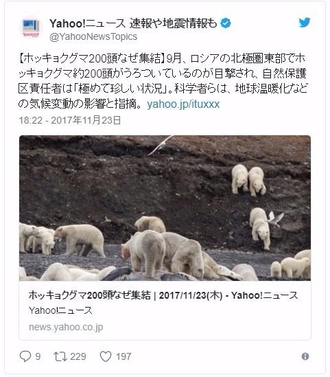 【南極】気候変動による影響か「極めて珍しい」…海岸沿いに200匹近い「ホッキョクグマ」が集結