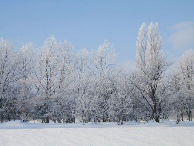 【天気】北海道で気温が下がり「初雪」を観測…関東も昨日から寒い