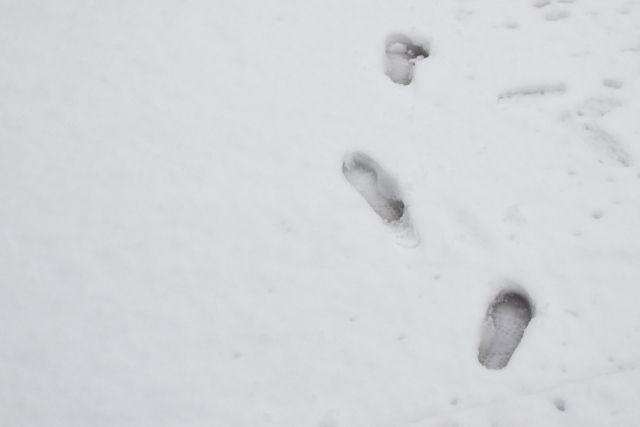 【気象庁】異常天候早期警戒情報を発表…気象庁「今週末からかなりの低温に注意」