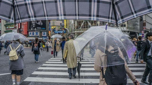 【夏終了のお知らせ】もう秋になります?来週には「秋雨前線」が到来!