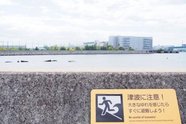 tsunami7687.jpg