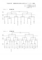 平成29年度新人トーナメント表(ソフトボール)