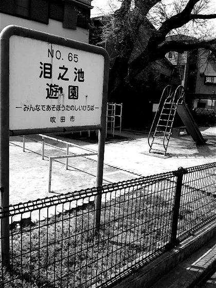 namidanoikeparkDCIM0294.jpg