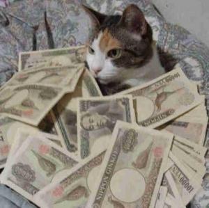 お金が入ってくる