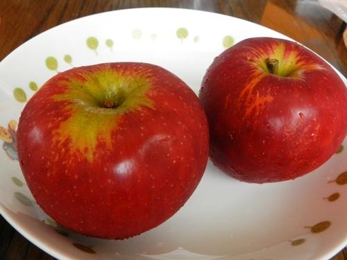 りんご あかね